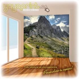 Vinilo fotomural de sendero que lleva a la montaña. Lleva la naturaleza a la pared de tu hogar.